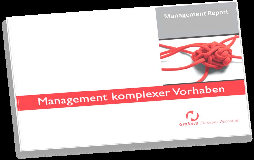 Report Management komplexe Vorhaben