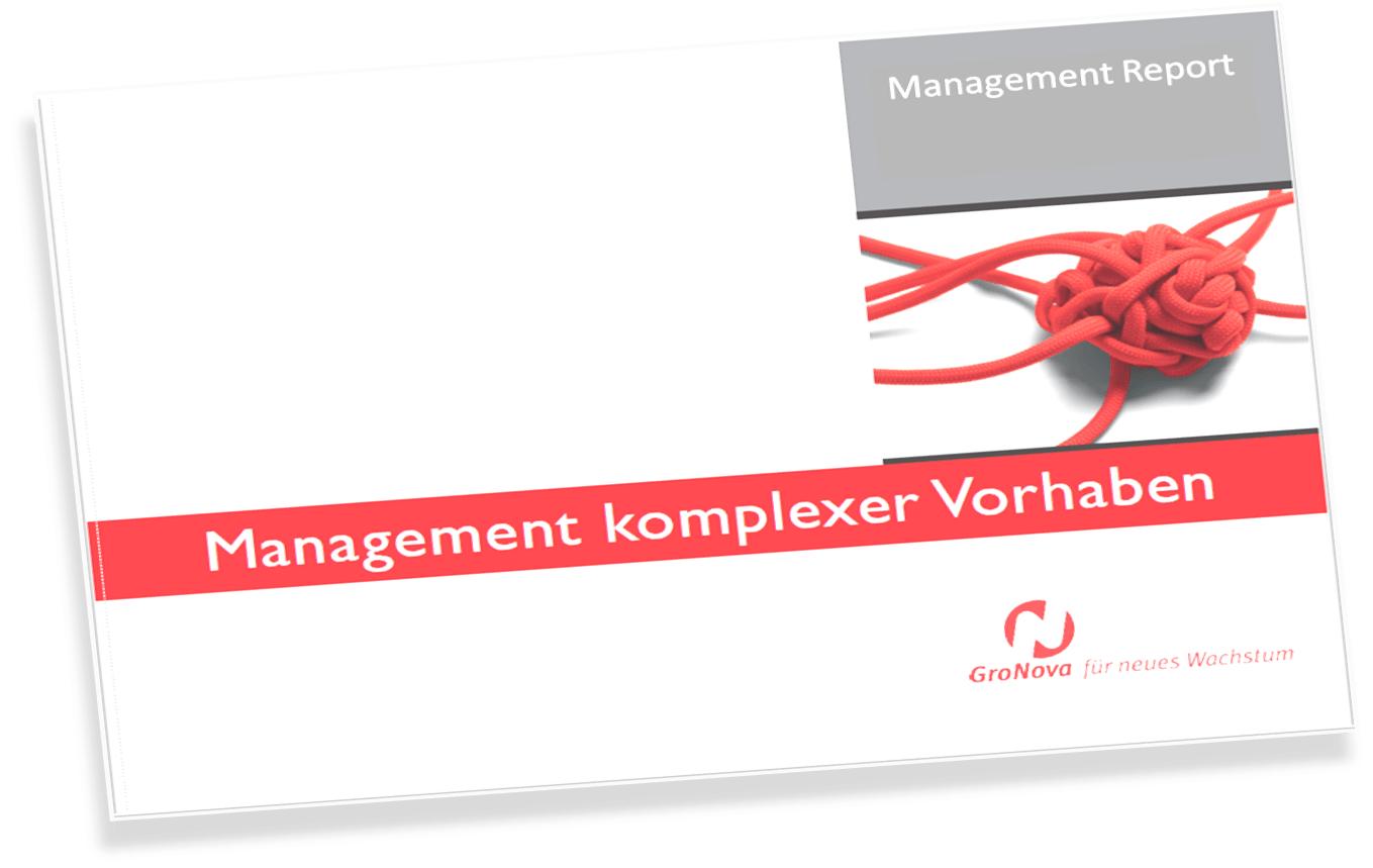 Report Management komplexe Vorhaben